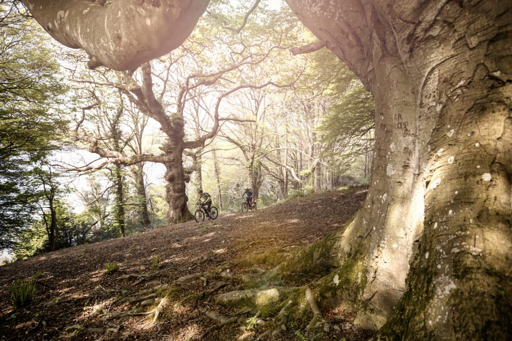 Castlewellan Trail Centre Nordirland