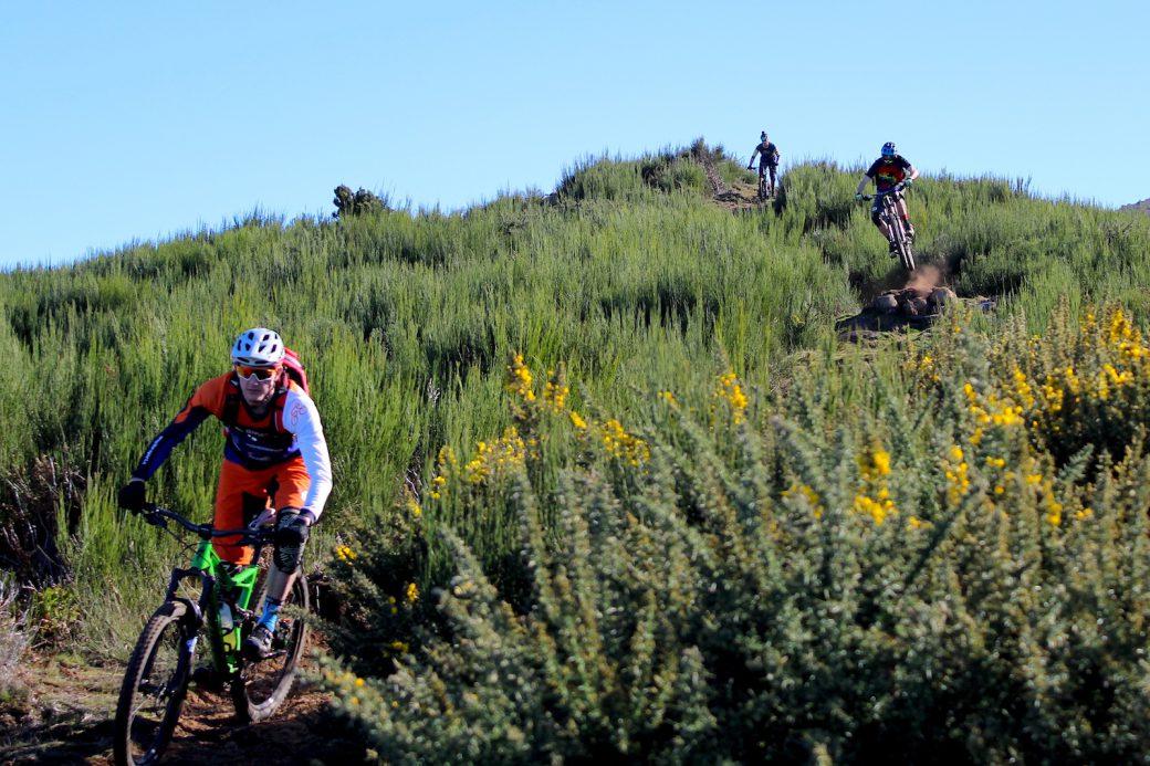 Madeira Enduro Mountainbike Freeride