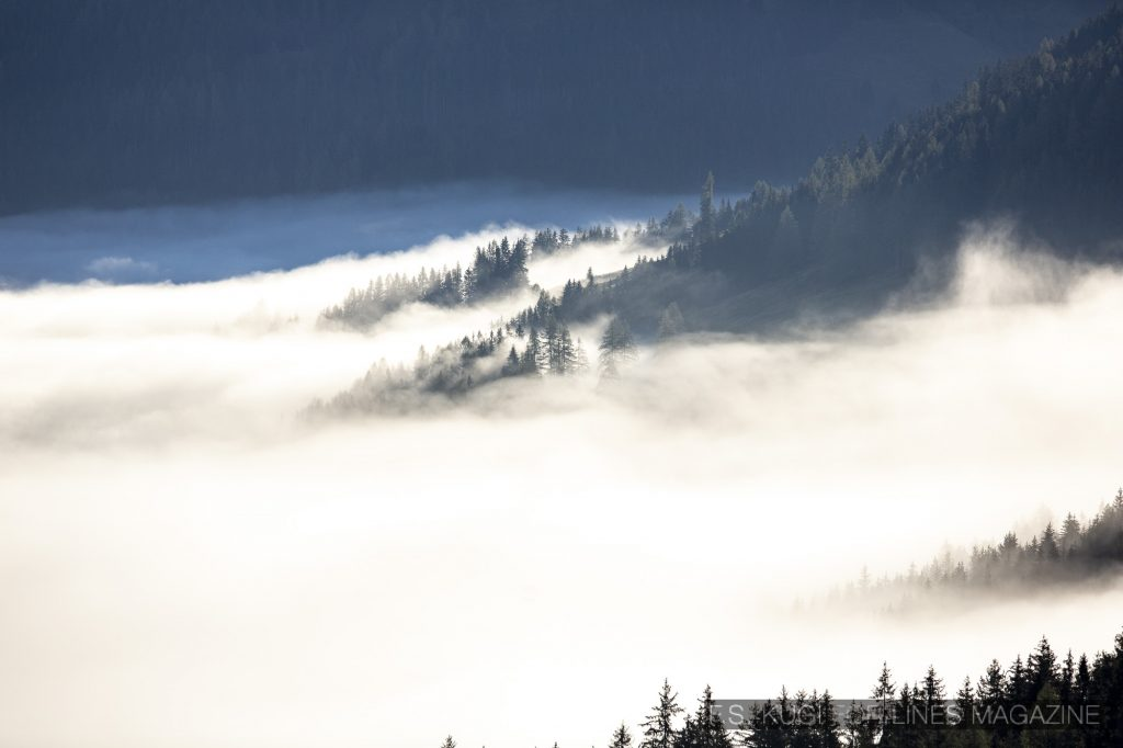 MTB WM Leogang 2020 Nebel