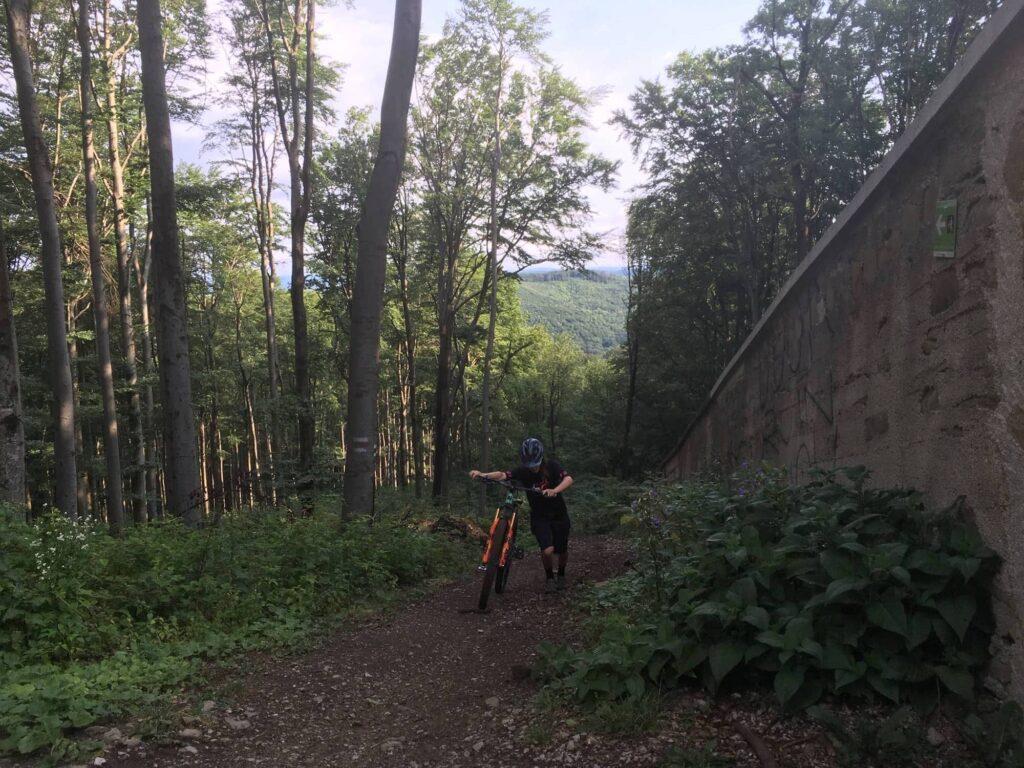 Wienerwald Komplettrunde