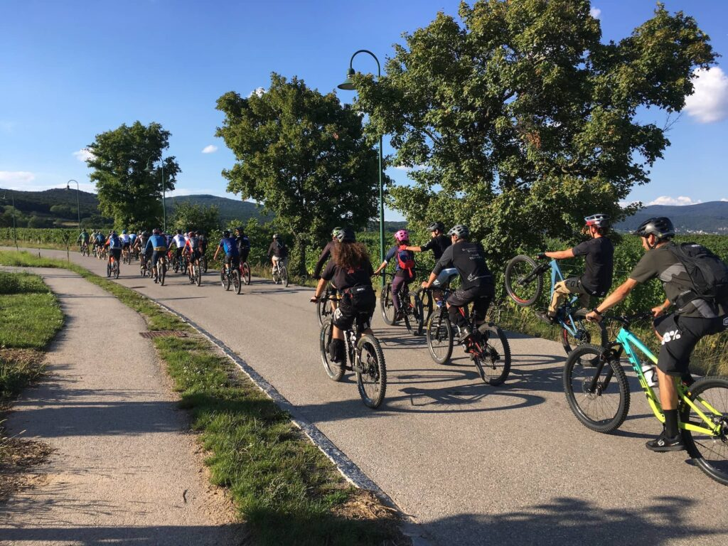 LINES Ride Bikeshop Kreuzer Bad Vöslau 2020