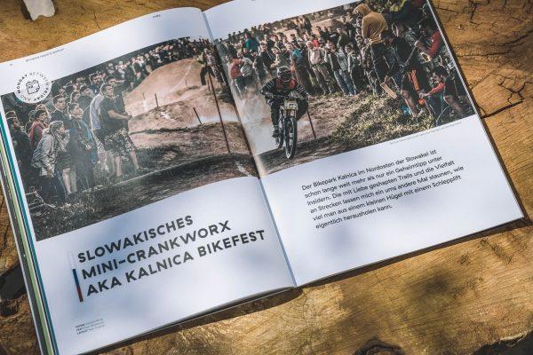 LINES Issue #11 | Bikefest Kalnica